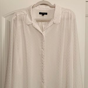 Banana Republic Sheer LS Blouse